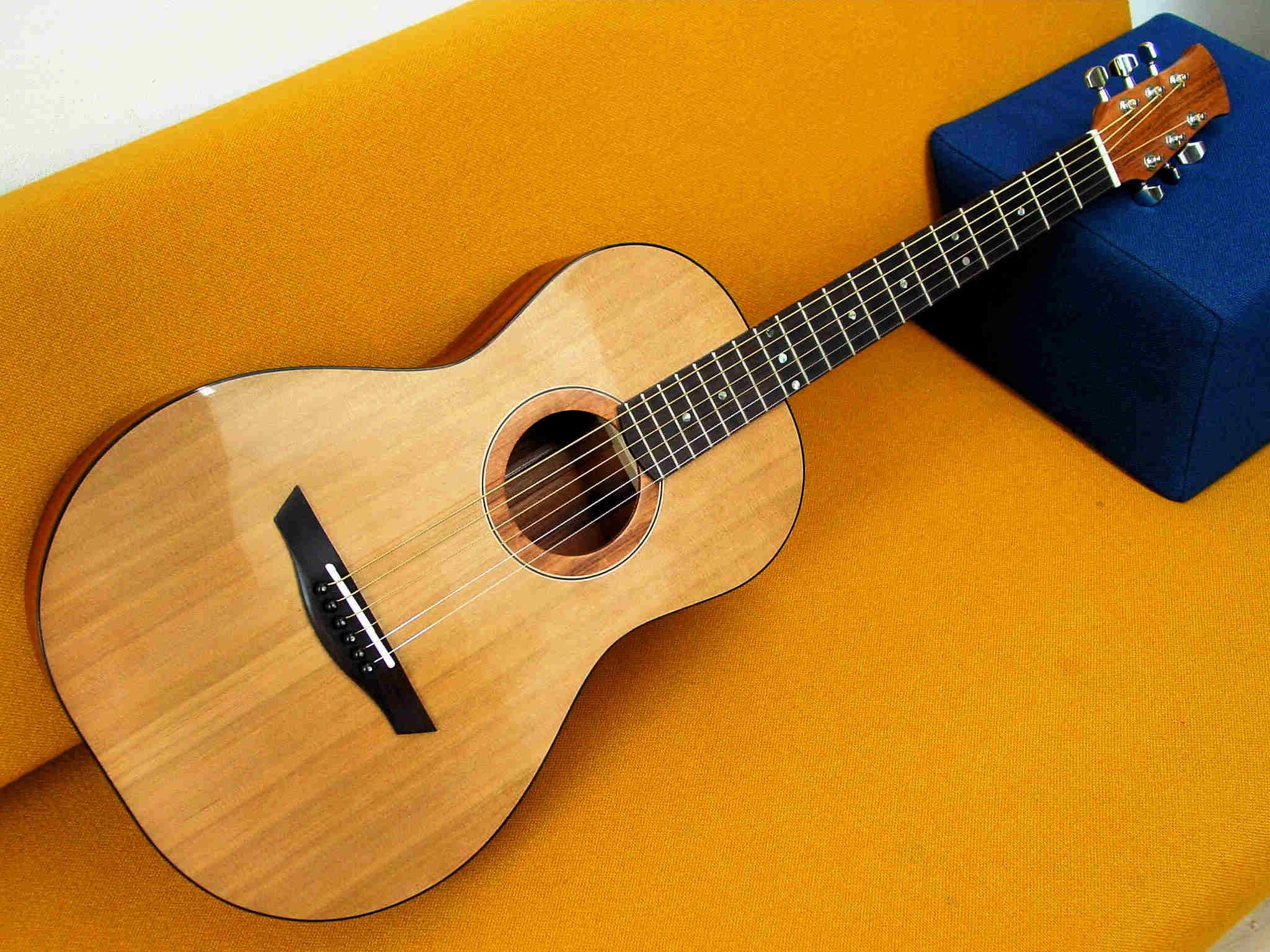 parlour guitar #4